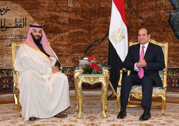 Riyadh supports Egypt's 'war on terror': Crown prince